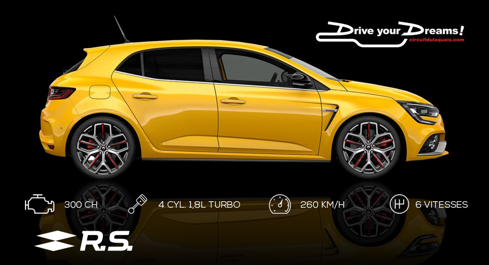 Stage Coaching Mégane 4 RS
